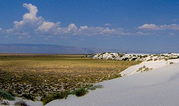 English: The view from atop a dune at White Sa...